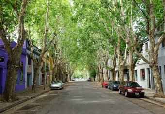 BA's Palermo neighborhood